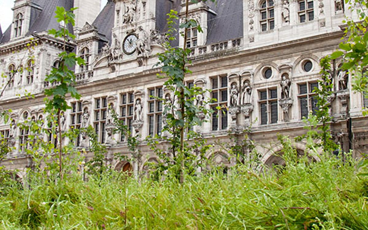 Paris Respire - Ville de Paris