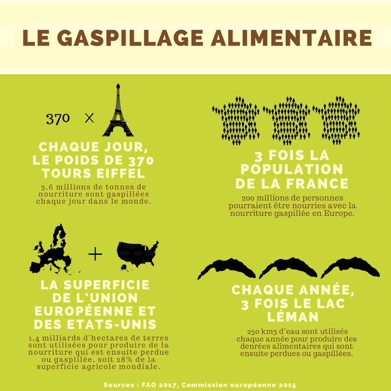 Infographie gaspillage alimentaire (carré)