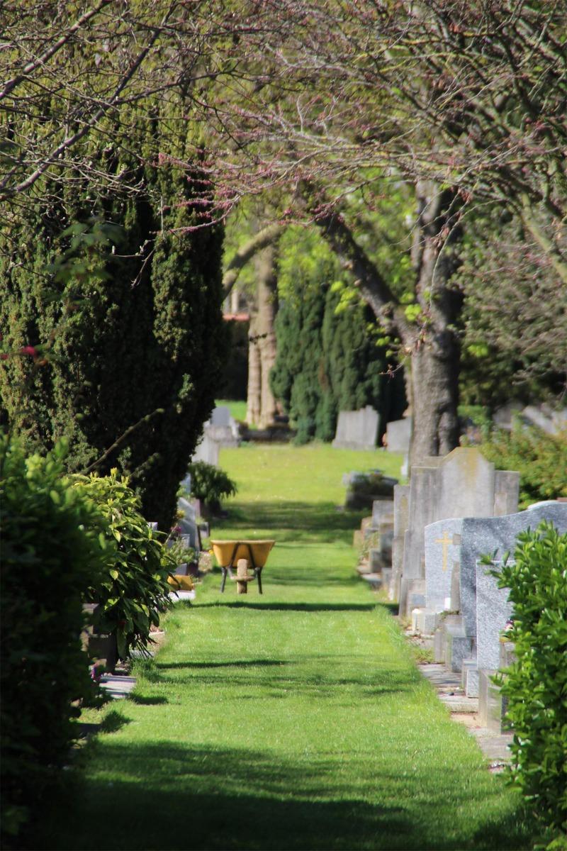 Allées engazonnées au cimetière parisien d'Ivry