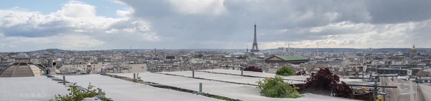 développement durable toiture végétalisée tour Eiffel
