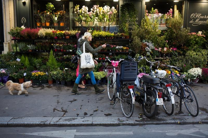 Fleuriste, vélos, passant chien