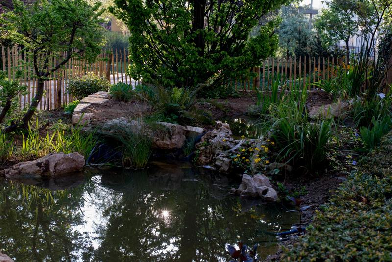 Mare écologique au jardin Villemin