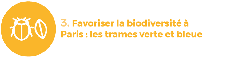 rapport développement durable 3 biodiversité