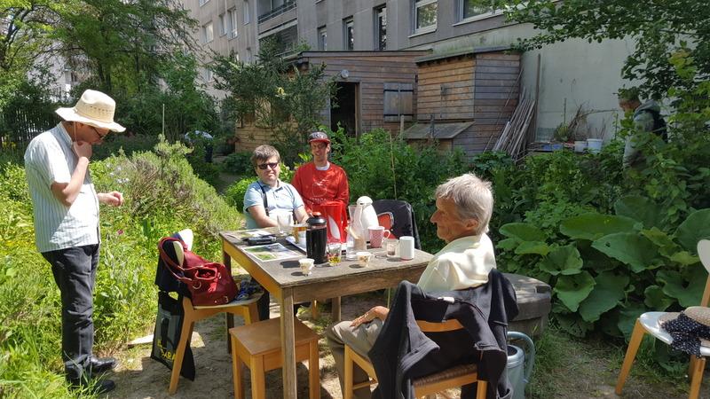 Jardin du 12 (assoc ARFOG les jardins du Béton)