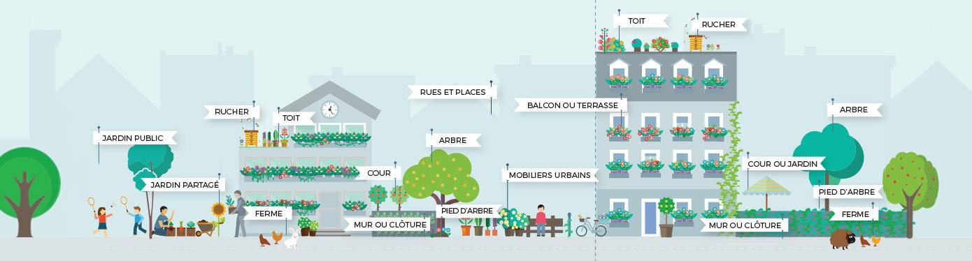 Plateforme Végétalisons Paris