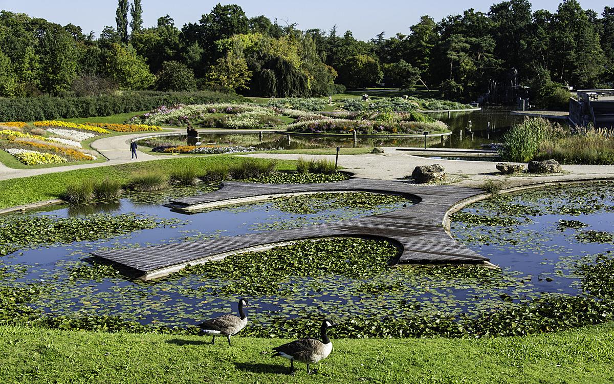 Que Faire Au Jardin En Janvier parcs, jardins, squares et espaces verts - ville de paris
