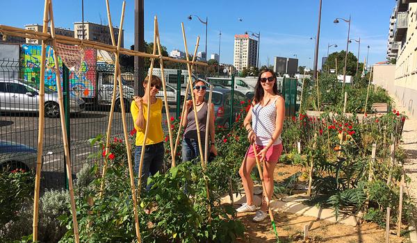 Budget participatif Cultiver, verdir et jardiner en bas de chez soi, c'est Faure'midable !