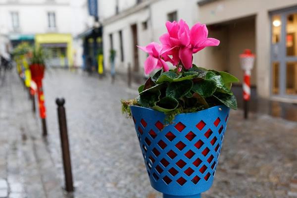 Image d'un chapotelet fleuri