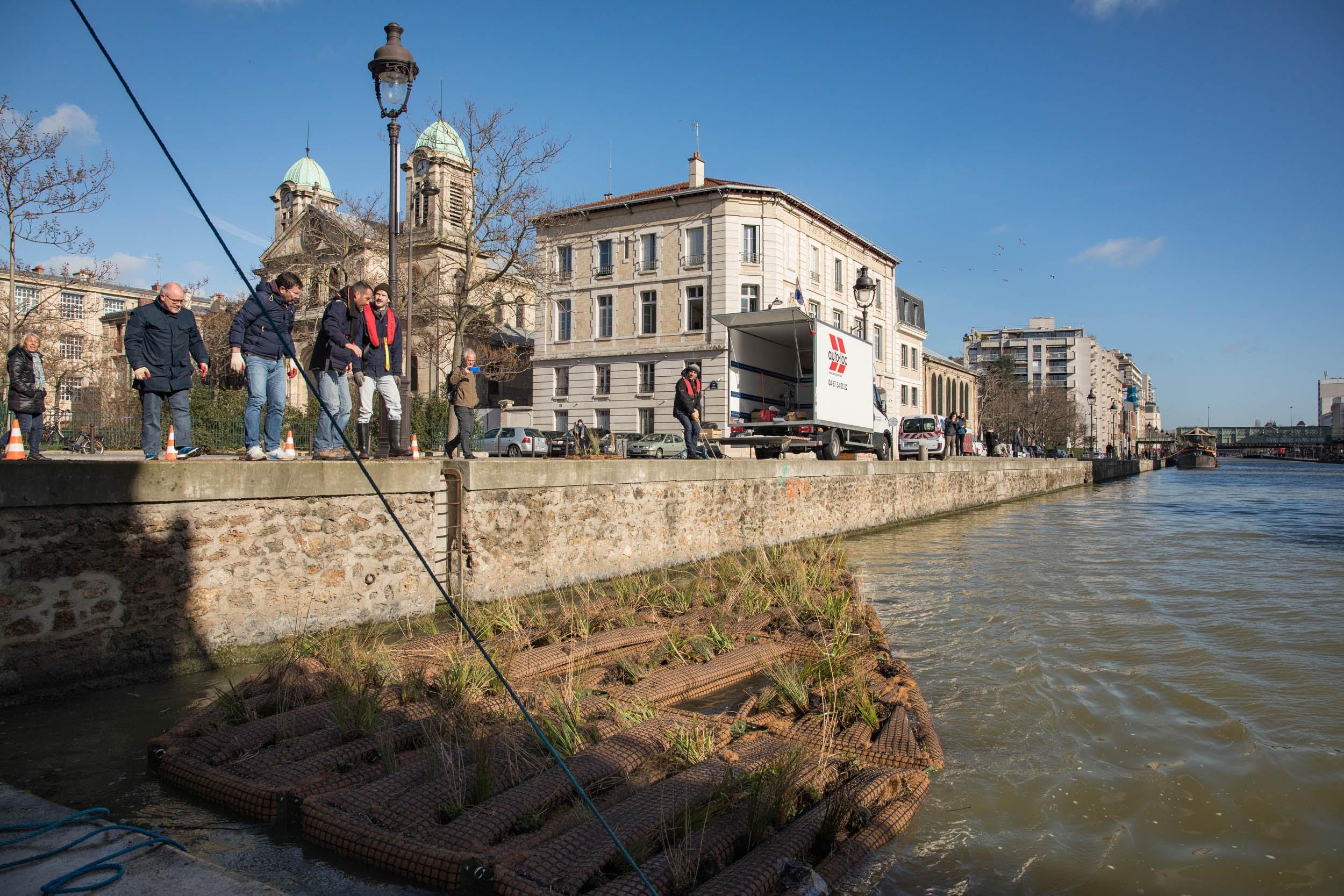 Installation d'un radeau végétalisé quai de l'Oise