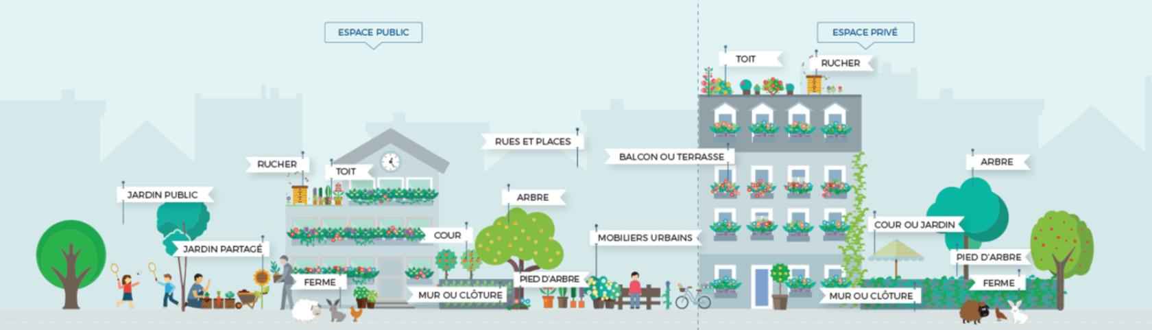 Frise montrant les différents types de projets de végétalisation sur l'espace public et l'espace privé.