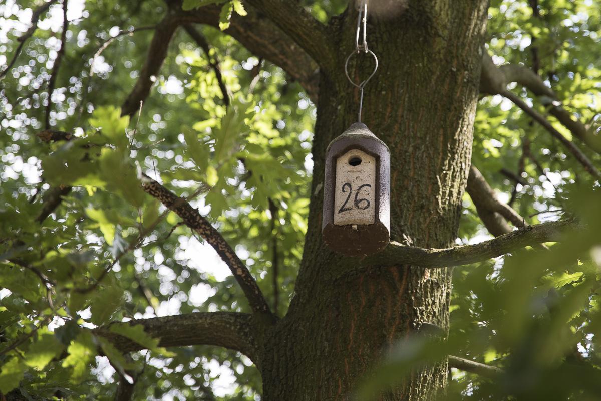 Nichoir à oiseaux au Parc Kellerman