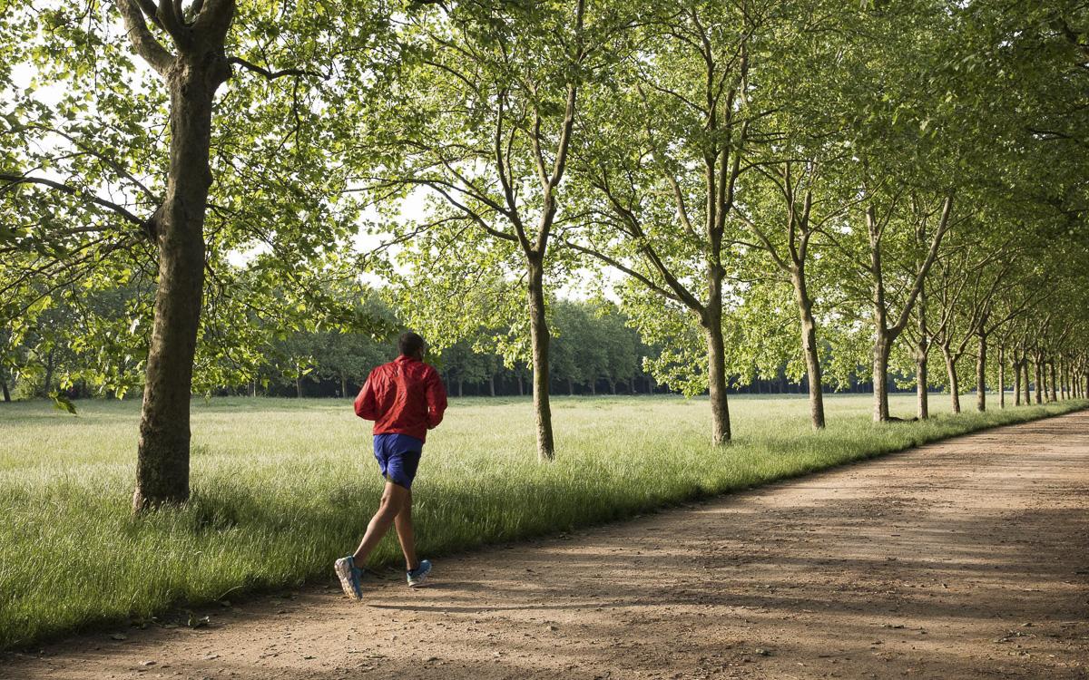 Course à pied au bois de Vincennes