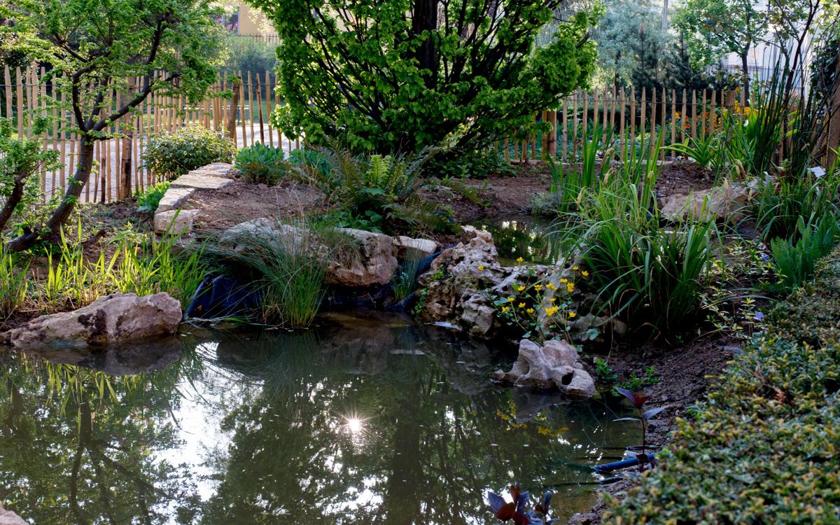 Mare écologique au jardin Villemin (10e)