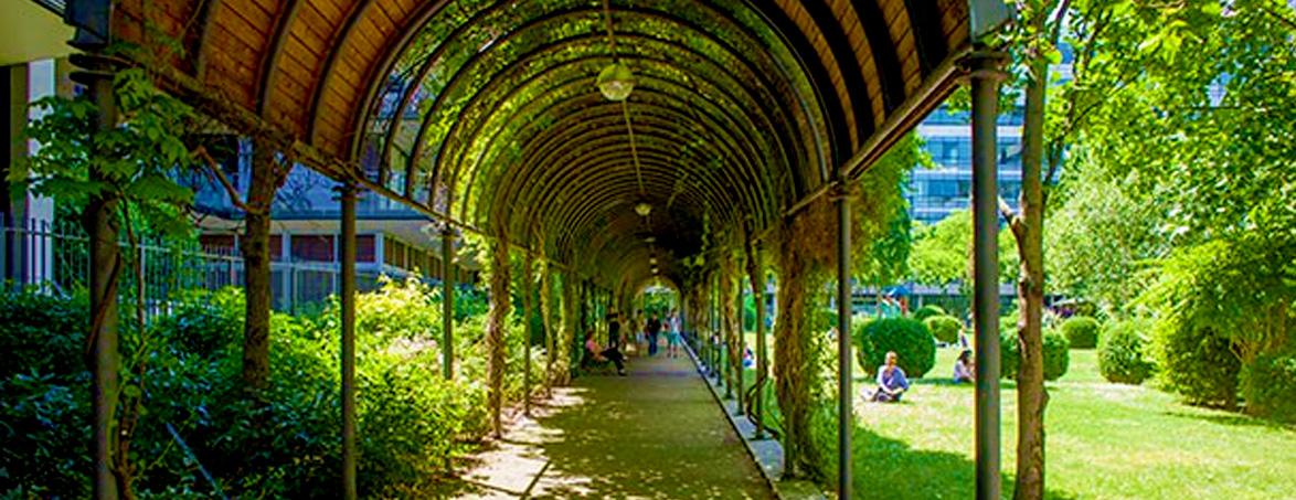 Le jardin Claire Motte