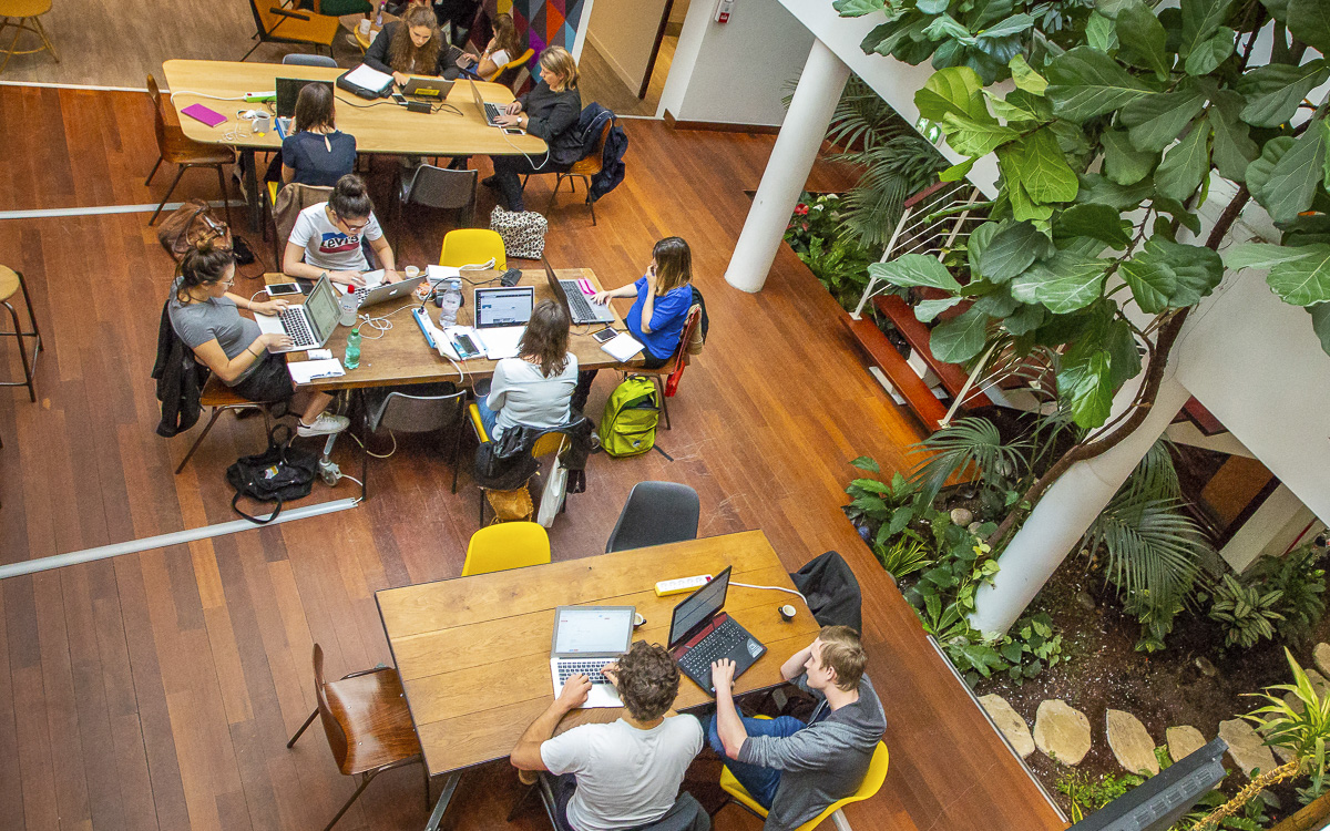 Espace de coworking chez Team Willa