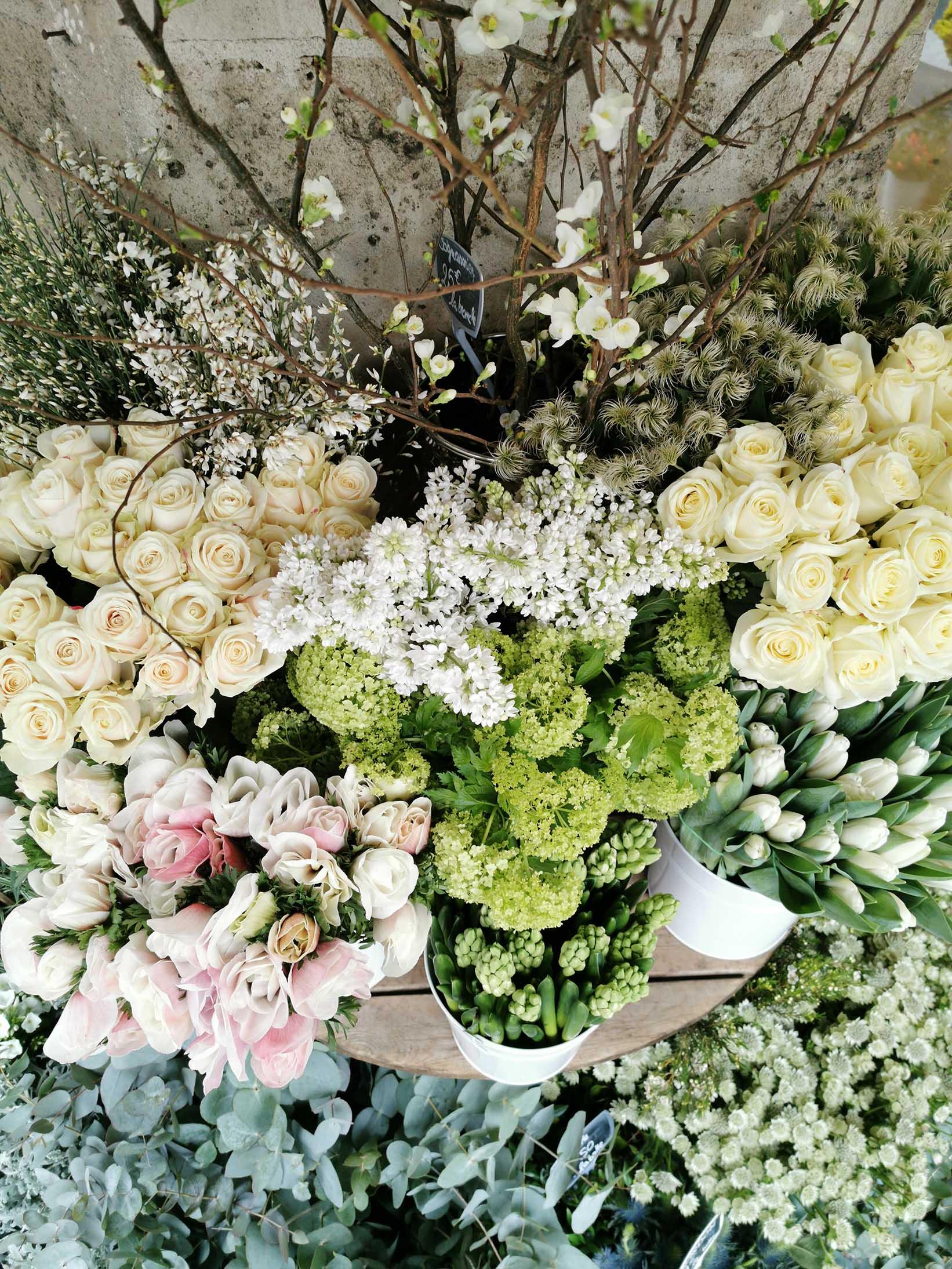 maison_des_fleurs_2