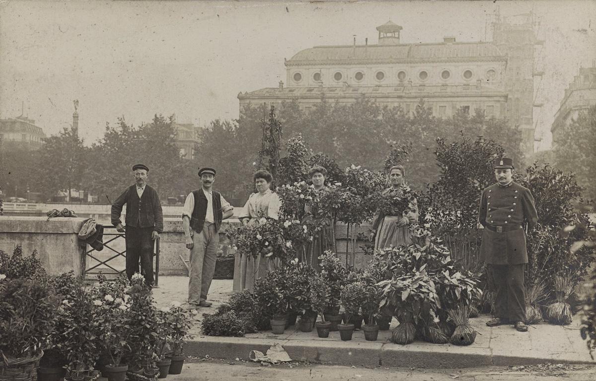 Marché aux Fleurs, quai aux Fleurs (4e arr.) 1905