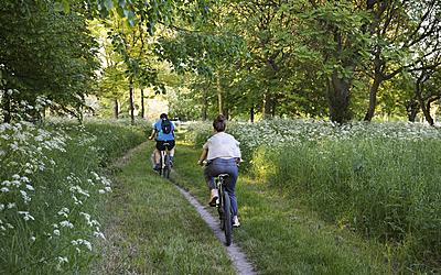 Balade à vélo dans le bois de Boulogne