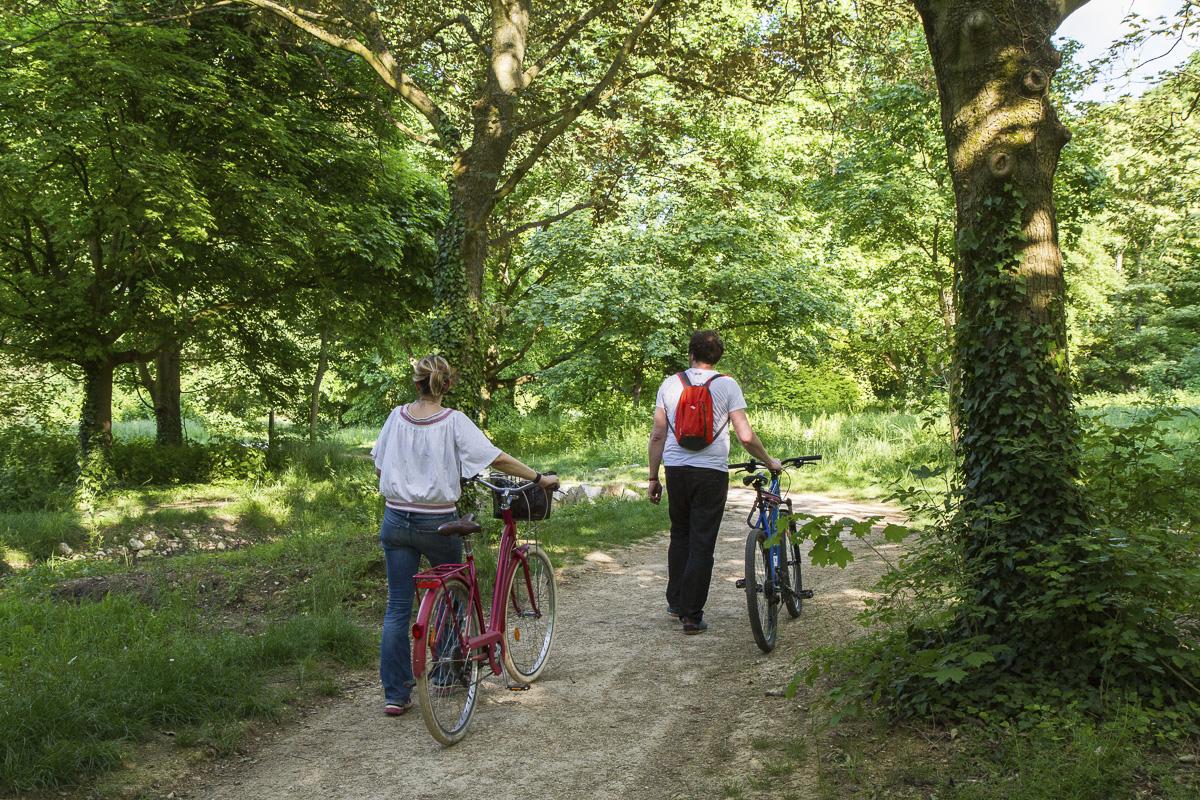 Promeneurs à vélo dans le bois de Vincennes