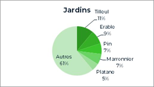11% de tilleuls, 9% d'érables, 7% de pins, 7% de marronniers, 5% de platanes et 61% d'autres essences