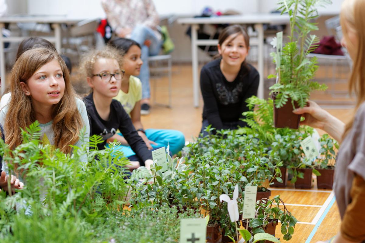 Des petits parisiens construisent un poulailler écologique pour le jardin de l' Hôtel de Ville