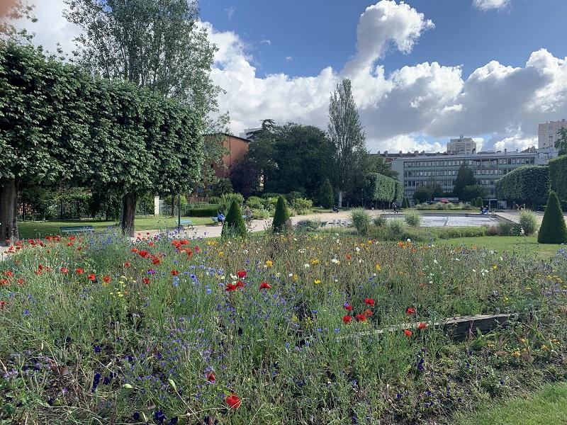 Photographie du Parc de Choisy en fleur