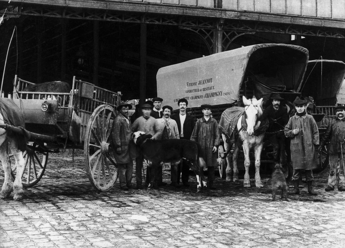 Le marché aux bestiaux de La Villette, années 1910.