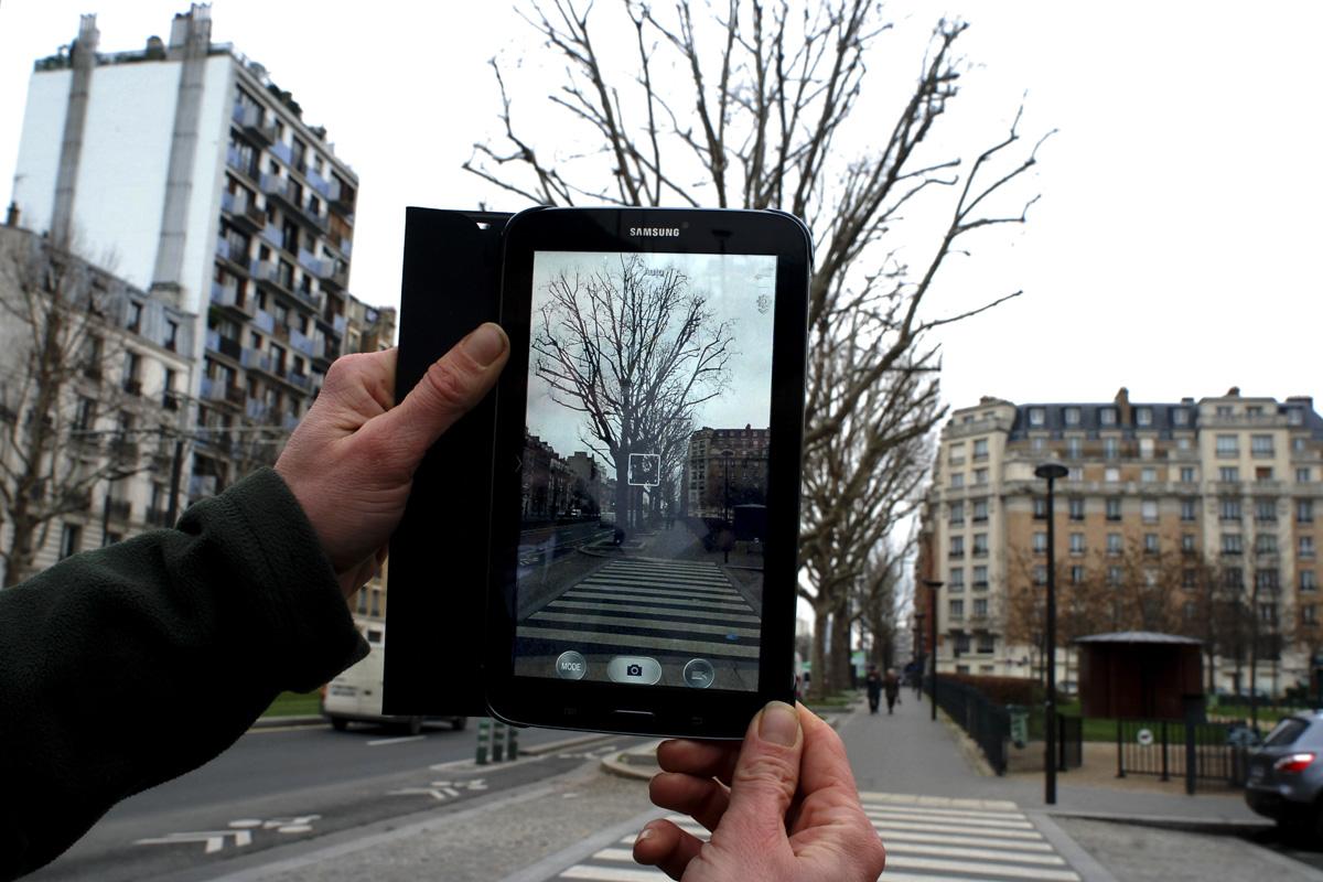 Une tablette tenue par deux mains photographie un arbre pour le suivi sylvicole grâce à une application