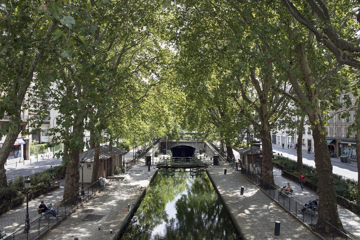 Les arbres sur le canal Saint-Martin.