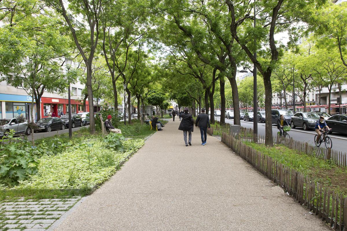 Végétalisation du boulevard de Belleville.