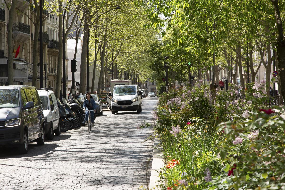 Jardinière au centre de l'avenue Trudaine 9e.
