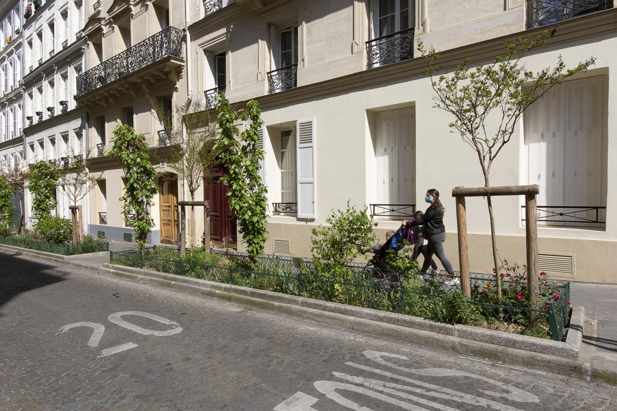 Jardinière sur trottoir rue Manuel.