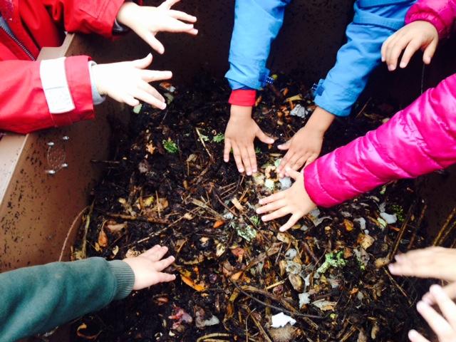 mains dans le compost