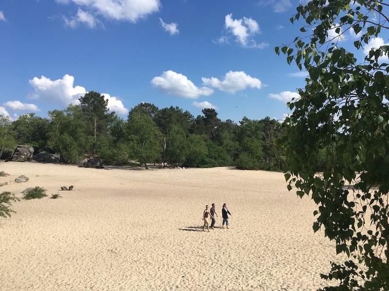 Les sables du Cul du chien, forêt de Fontainebleau