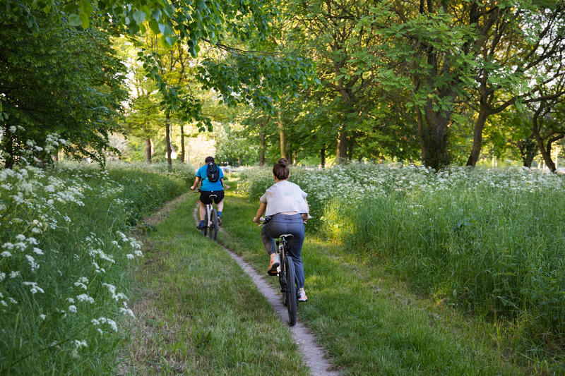 Vélo au Bois de Boulogne