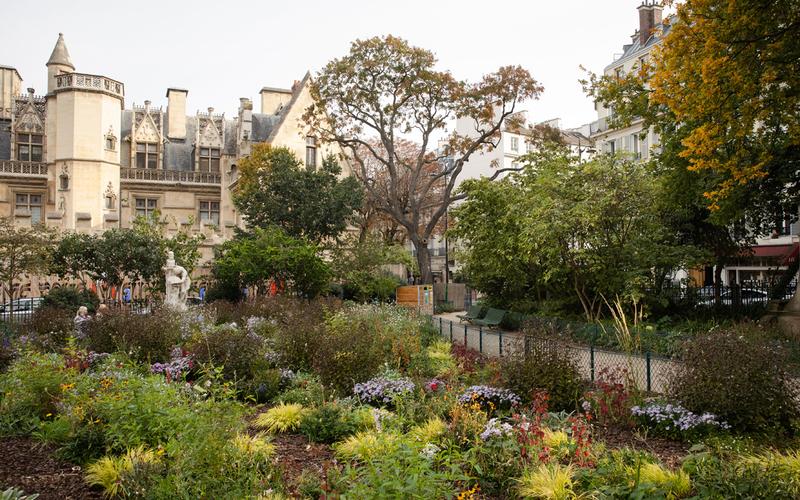 Le square Samuel Paty, entre la Sorbonne et le musée de Cluny (5e)