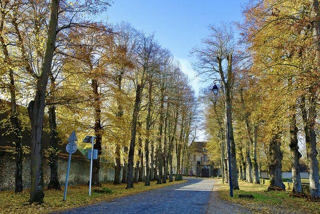 Les Mesnuls / Villages et Patrimoine