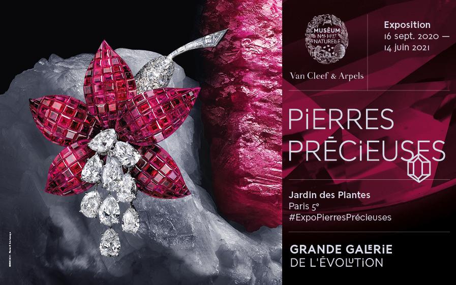 "Exposition ""Pierres Précieuses"" - REPORTE"