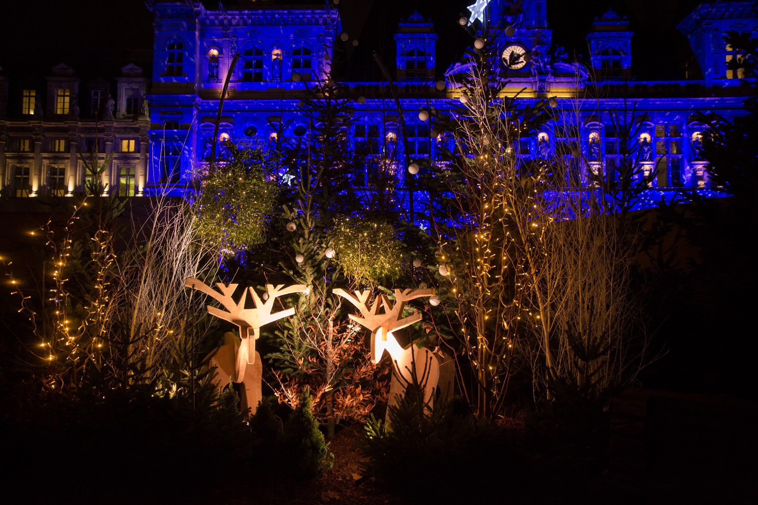 Illuminations et forêt enchantée sur le parvis de l'hôtel de Ville