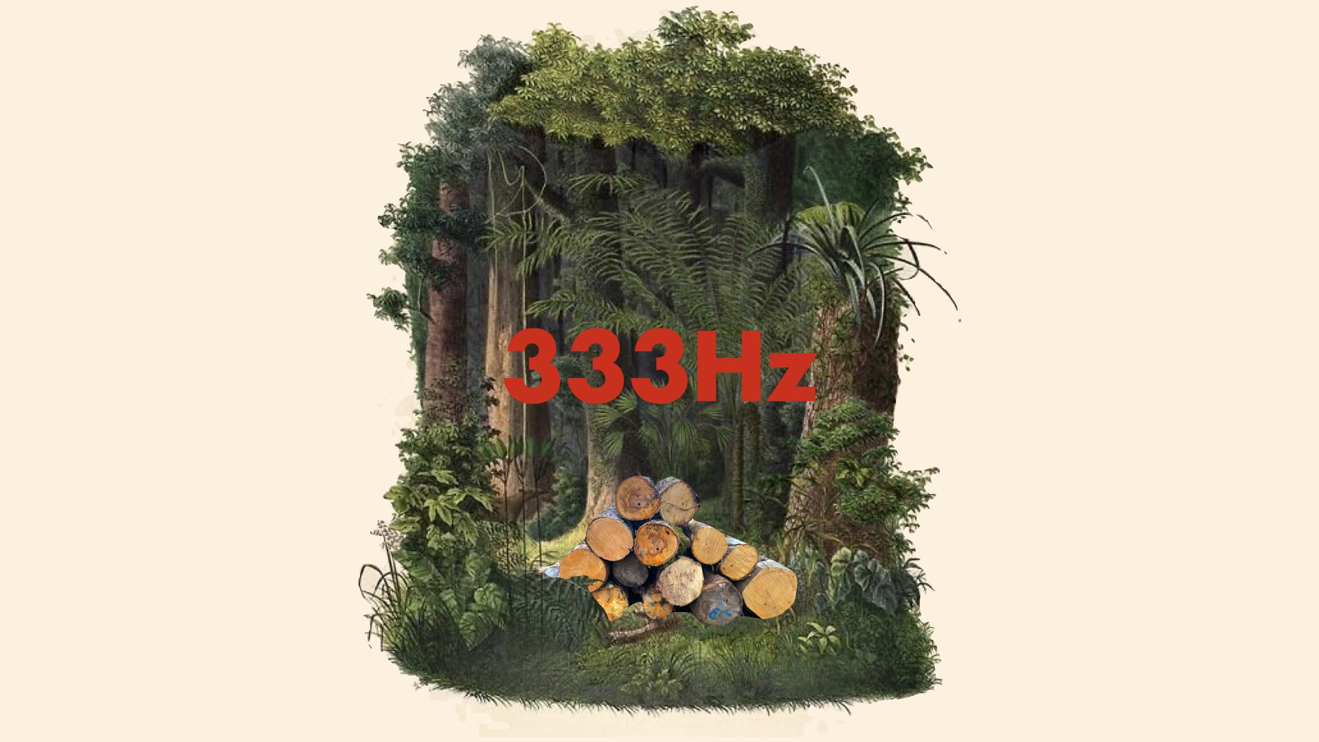 Exposition - 333 Hz, Antoine Bertin