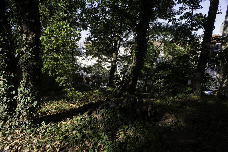 """Itinerario del paseo """"Gambader entre los pastos silvestres de Montmartre extraído del libro"""" 20 paseos por la naturaleza en París """""""