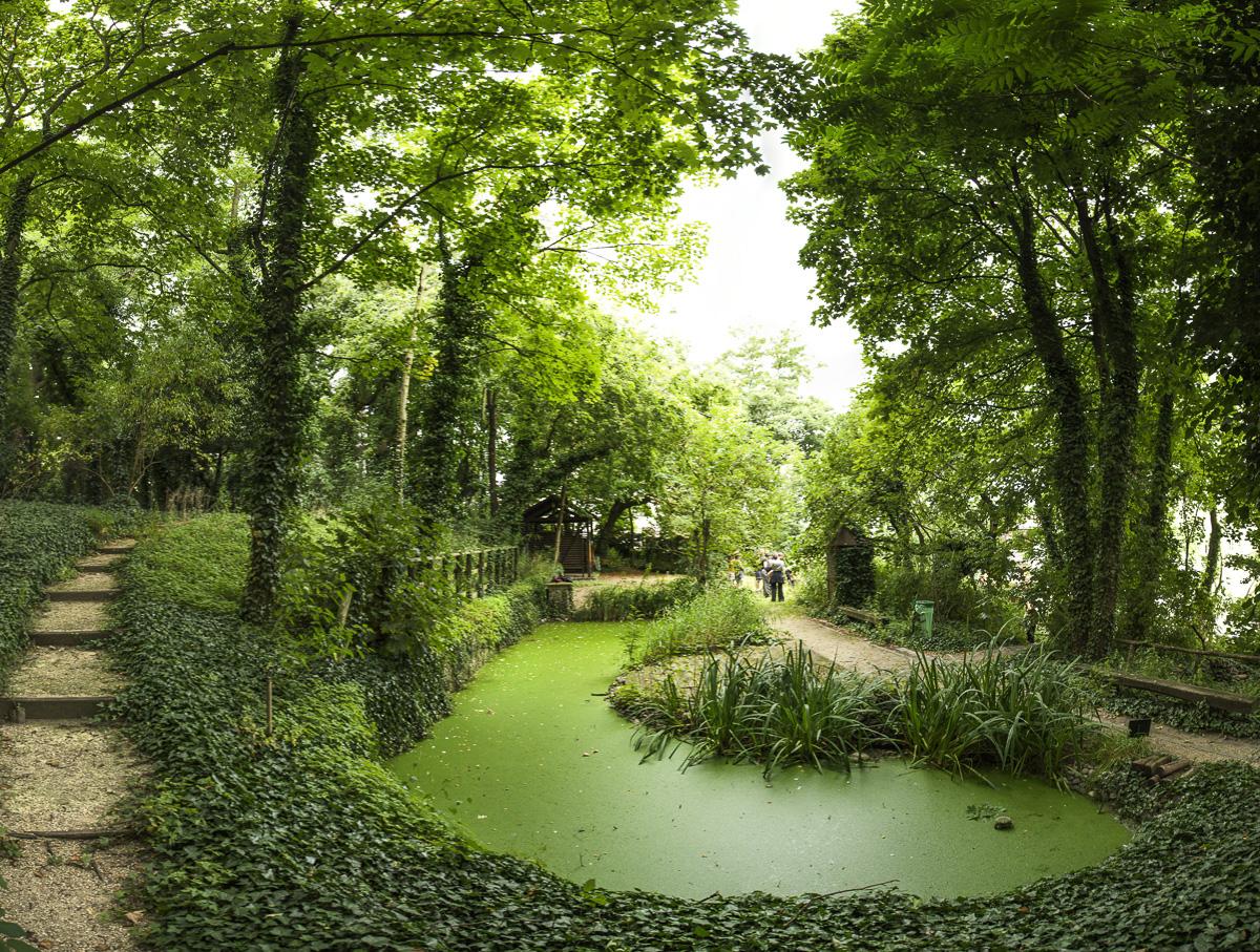 Jardín de San Vicente