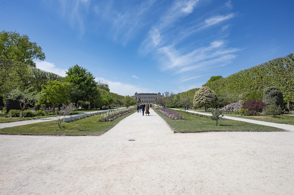 Le Jardin des plantes 5e.