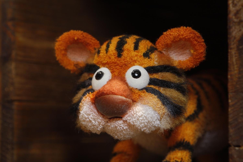 """""""Le Tigre et les animaux de la forêt"""""""