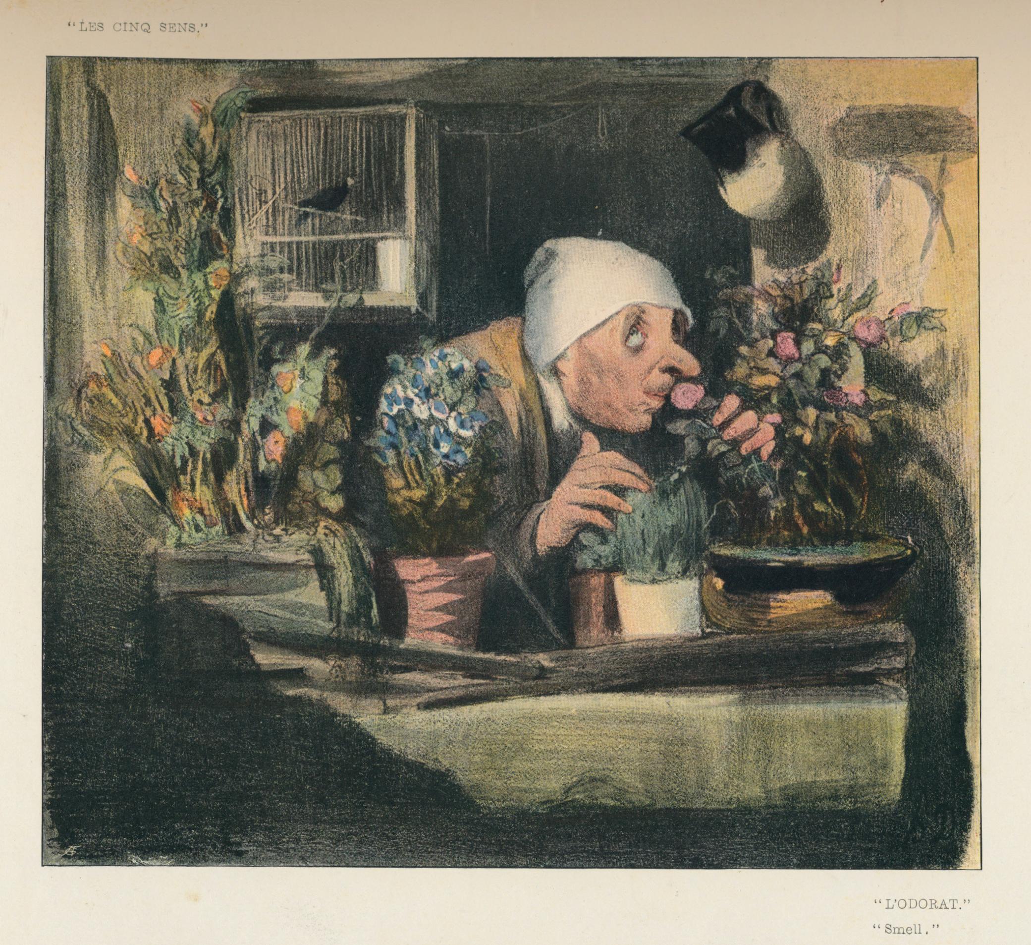 Atelier Redécouvrez le jardin par l'odorat |