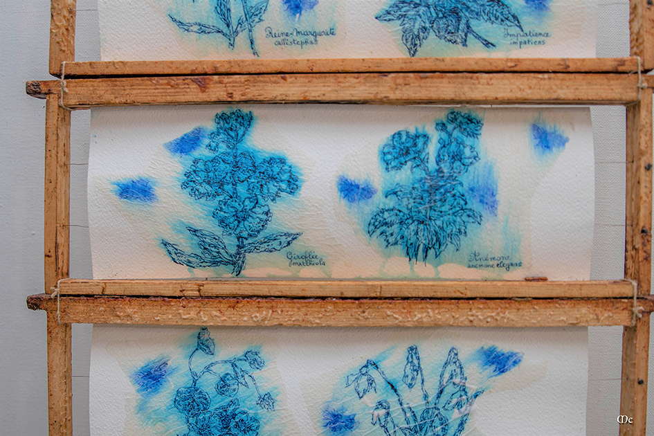Apis & Flores, encre, aquarelle et miel sur papier, cadre d'apiculteu