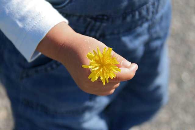 fleur enfant