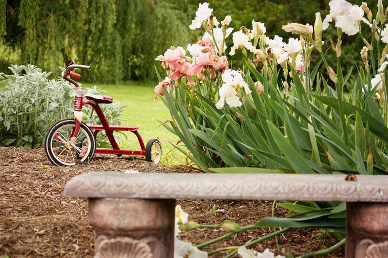 vélo enfant
