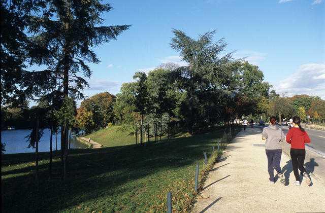 Courir au Bois de Boulogne