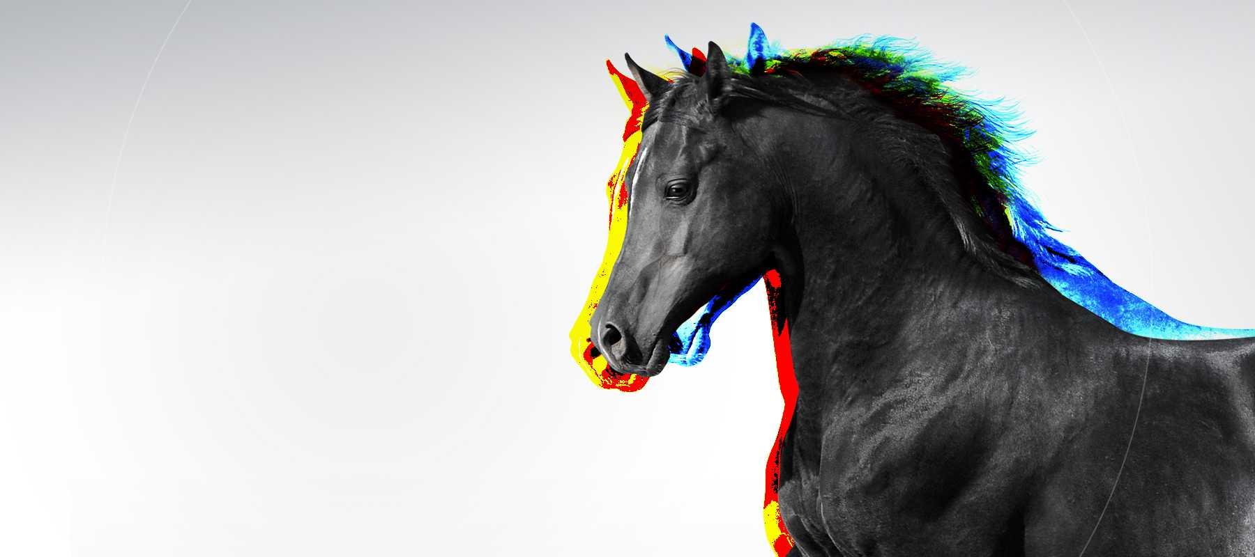 Le salon du cheval que faire paris for Salon du cheval paris adresse